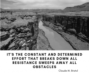 It's the constant and determined effort that breaks down all resistance sweeps away all obstacles